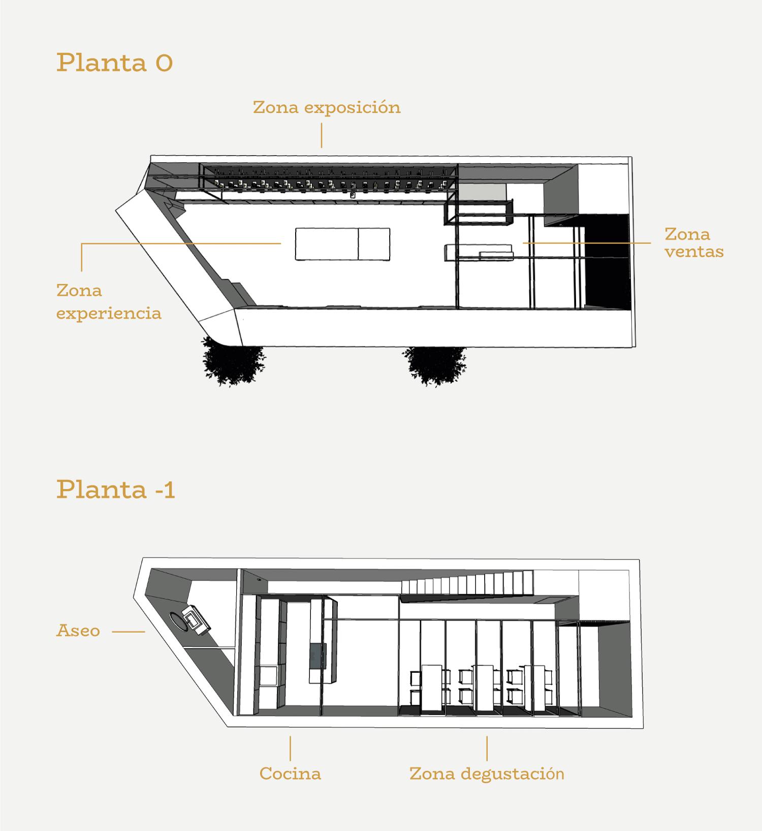Patronato-Olivarero-7