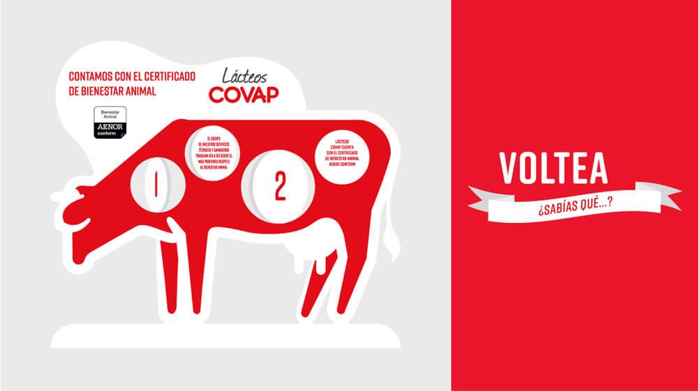 Covap-Car-2-3